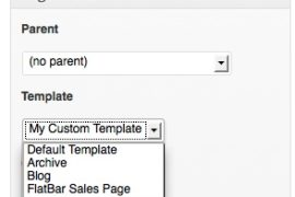 Custom Page Template