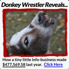donkey240x240